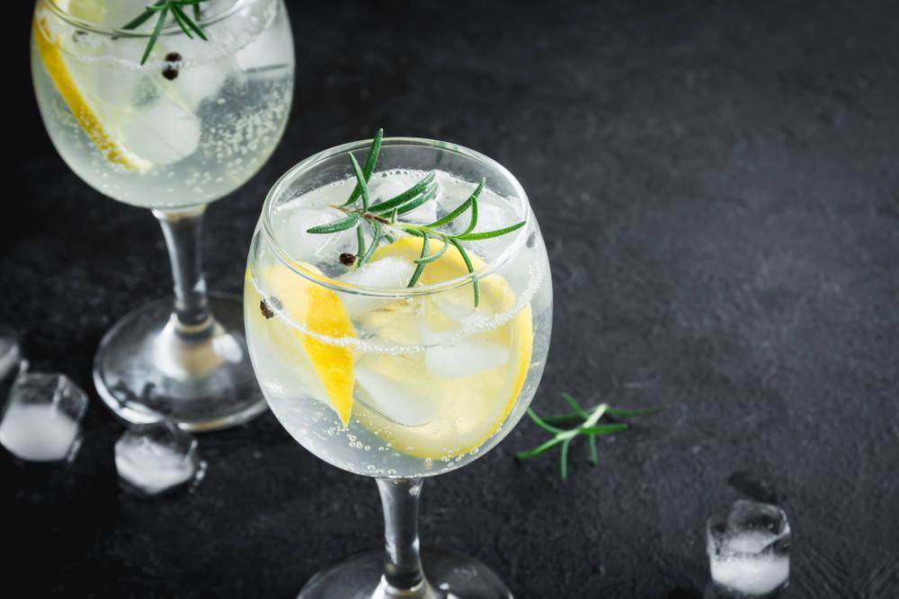 Aprende a preparar un buen Gin Tonic en sencillos pasos